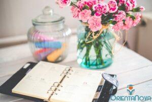 Planificación diaria de estudio